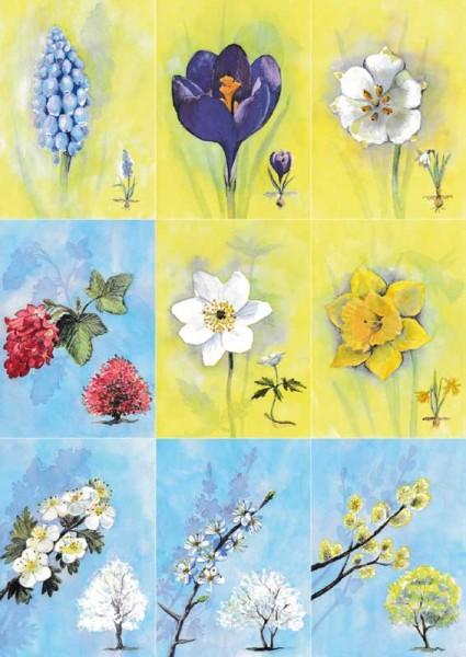 18 Bienen-Frühlingsblüten-Karten