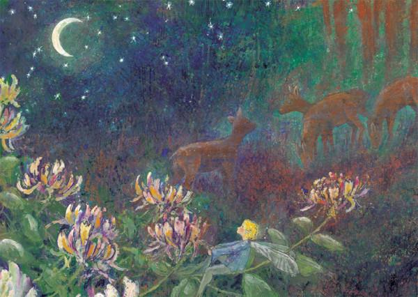 Rehe in der Nacht Postkarte