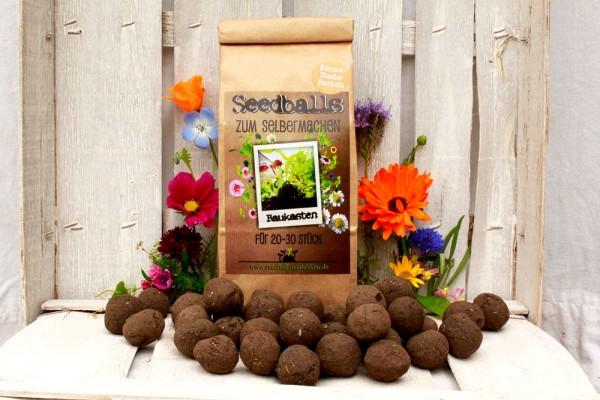 Bienenstaatsbankett Seedball Baukasten