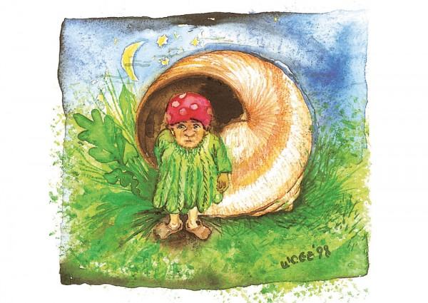 Schneckenhaus-Elf Postkarte