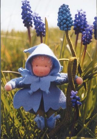 Blaue Perlhyazinthe Bastelpackung
