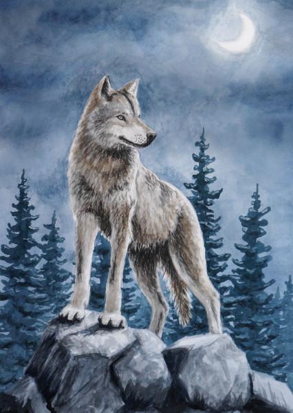 Der Wolf Postkarte