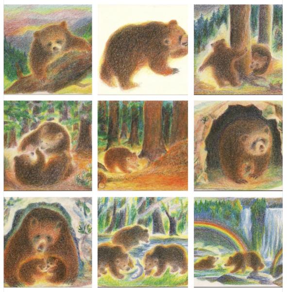 Postkartenserie BÄREN 9 Motive